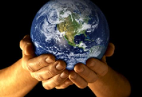 OF THE ENVIRONMENT Essay image search results