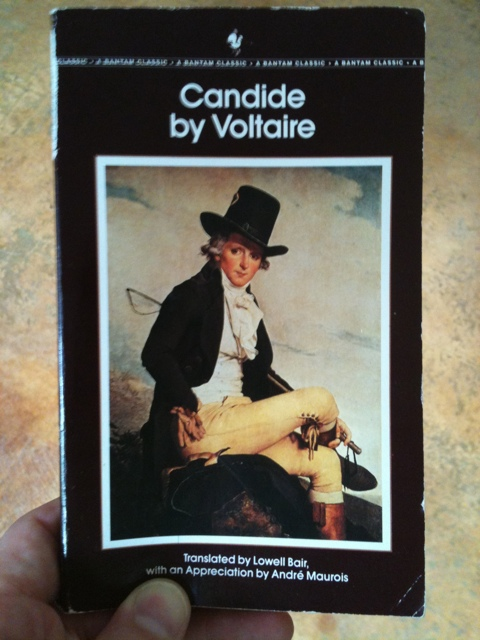religious satire voltaire s candide Examples of satire in 'candide' written by maria magher religious satire is also used in showing the hypocrisy of religious officials and making them look foolish voltaire's satire of monarchy and candide's optimism as illusion: boy.