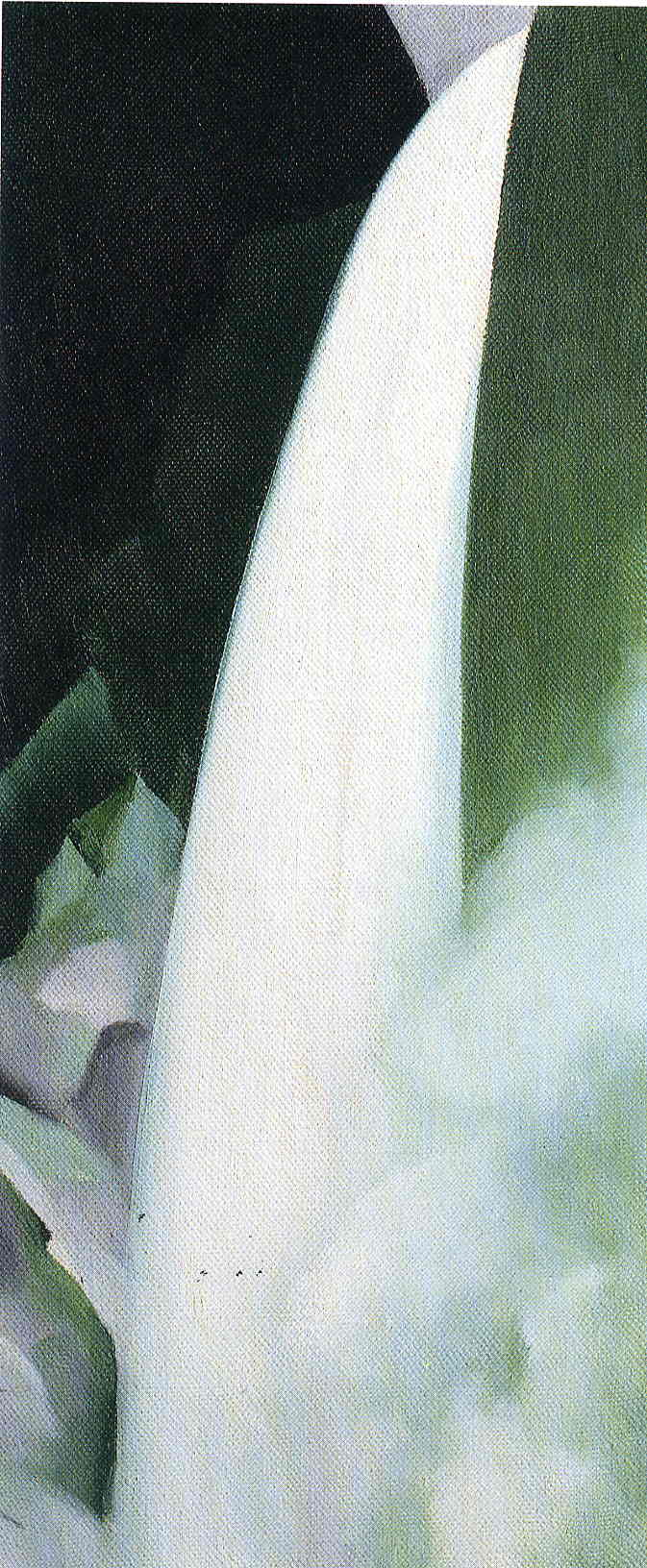 Green and White, Georgia O'Keeffe
