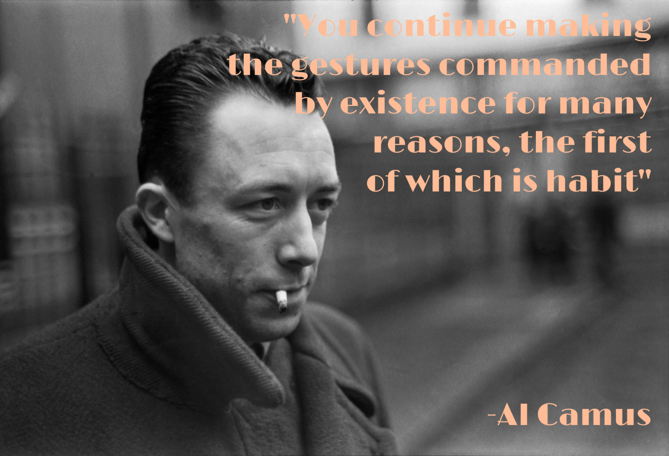 Image of: Wisdom Camus Biblioklept Seven Lifeaffirming Inspirational Quotes From Famous Philosophers