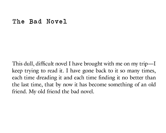 the bad novel