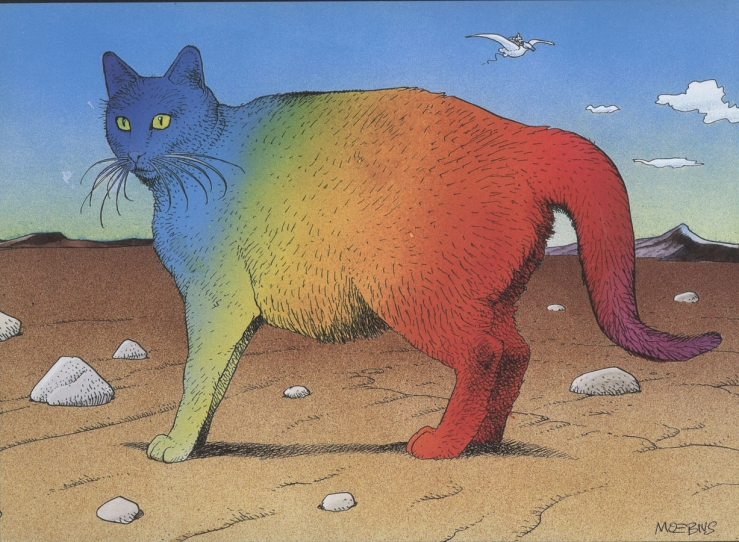 rainbow cat moebius