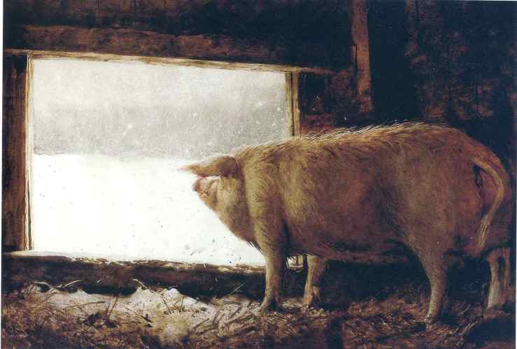 jamie-wyeth-winter-pig-1975