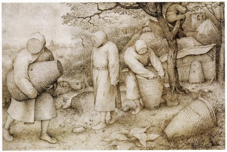 Die_Bienenzüchter_(Bruegel).jpg