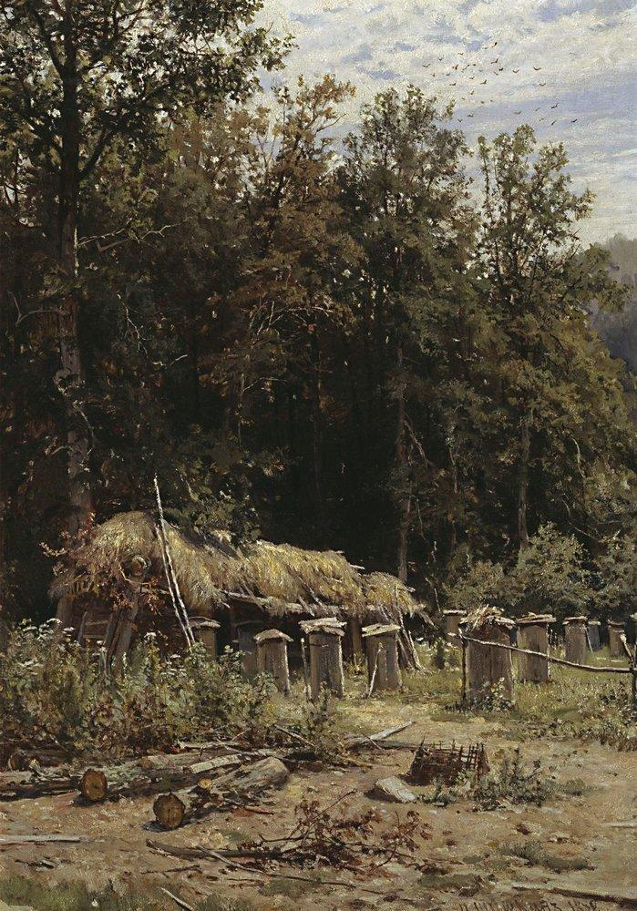 bee-families-1882