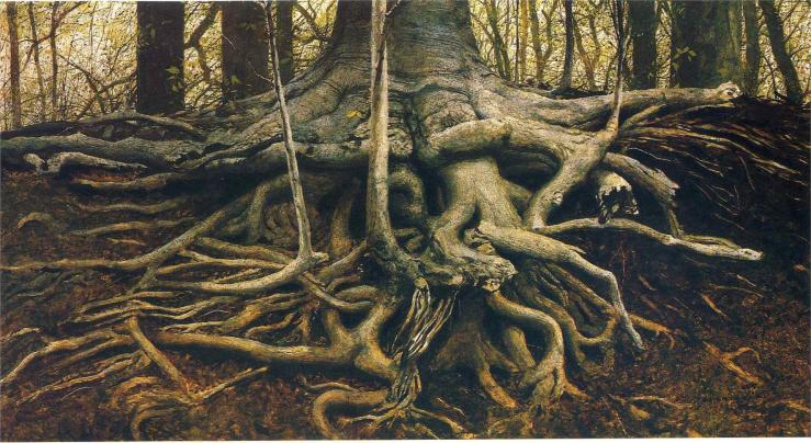 roots wyeth