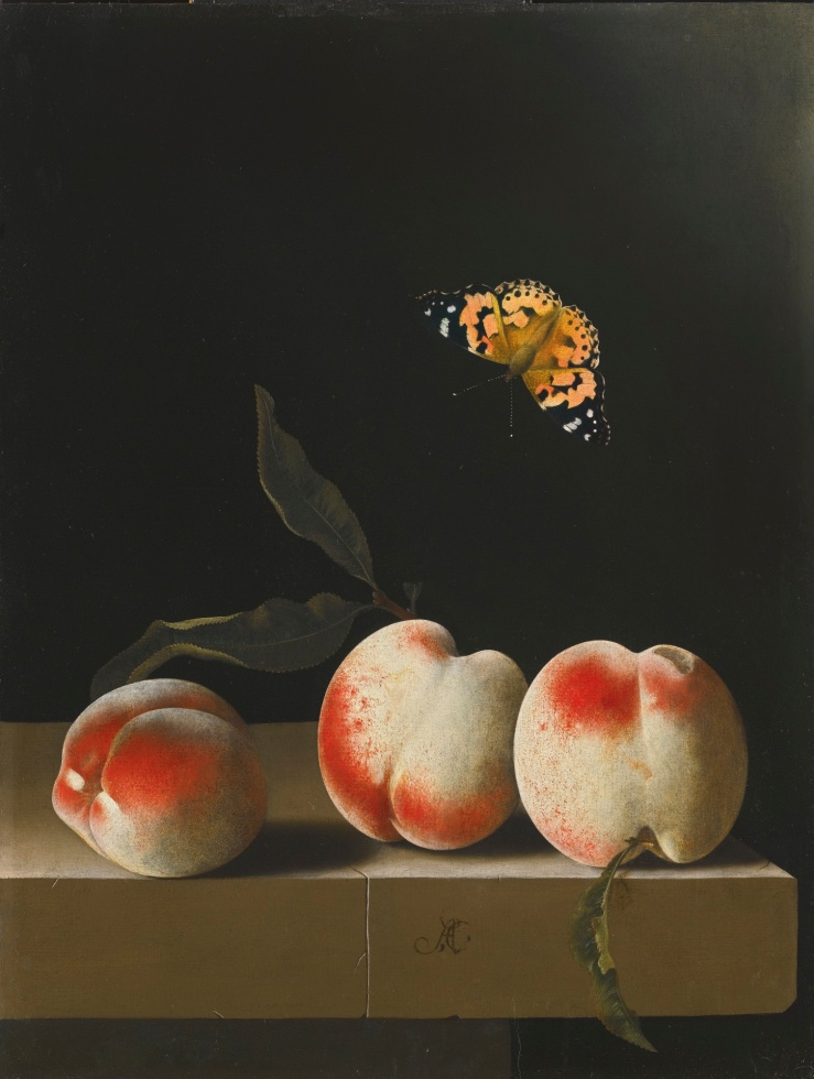 adriaen_coorte_-_three_peaches_on_a_stone_ledge_with_a_painted_lady_butterfly