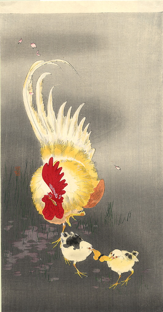 rooster-and-chicks