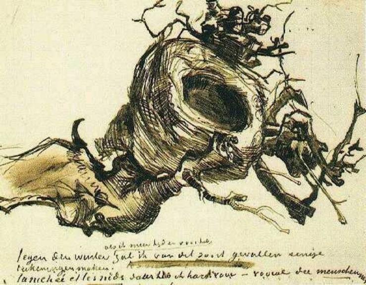 bird-s-nest-18851
