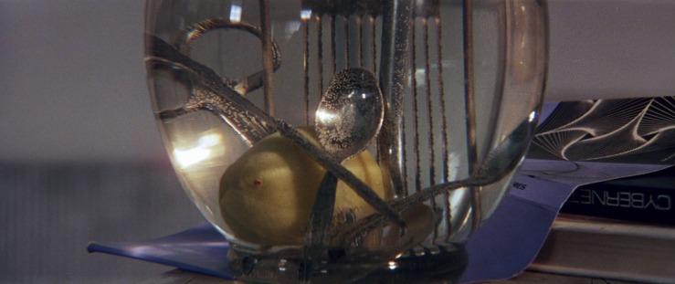 solaris-1972-118