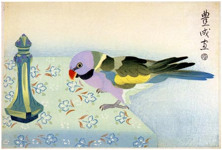parakeet-on-table-1924